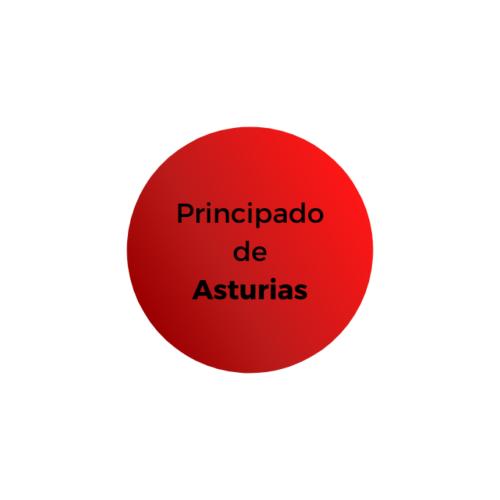 PRINCIPADO DE ASTURIAS - TEMARIO Y TEST